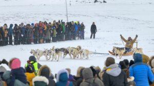 Foto David D. Grant, Arctic Friend