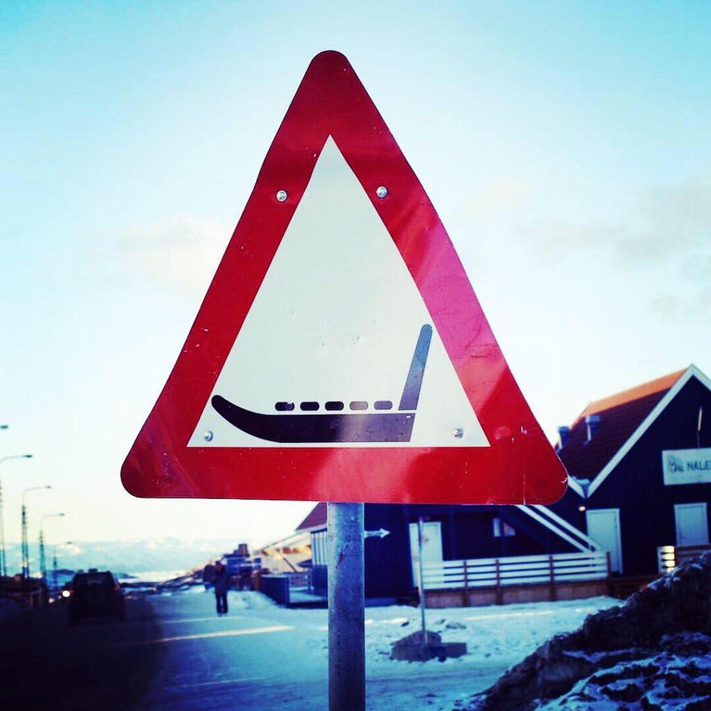 Foto Philip Holm Hansen, Arctic Friend